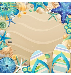 Flipflops and shells vector