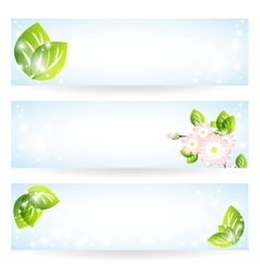 Banners with green leaves vector