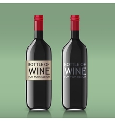 Transparent realistic glass bottles for wine vector