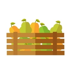 Fresh Pear at the Market vector image vector image