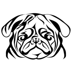 Pug on white vector