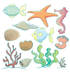 sea animals and plants vector image