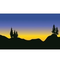 Silhouette of fir trees on the mountain vector image