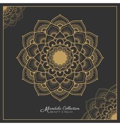 Henna mandala decorative ornament design vector image vector image