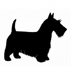 scottish terrier silhouette vector image vector image