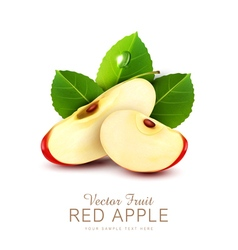 two slices of red apple with green leaf isolated vector image