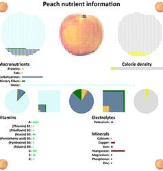 Peach nutrient information vector