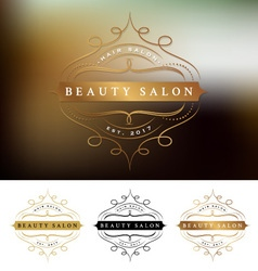Beauty salon frame logo design vector