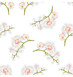 Seamless texture branches orchids phalaenopsis vector