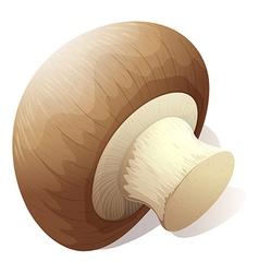 Single mushroom on white vector image vector image