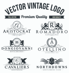 Set of high quality vintage logo vector