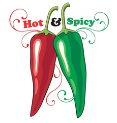 hot and spicy vector image