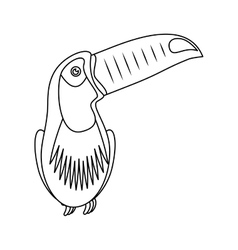 Toucan tropical bird icon vector