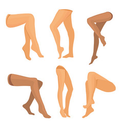Collection of beauty legs isolated vector