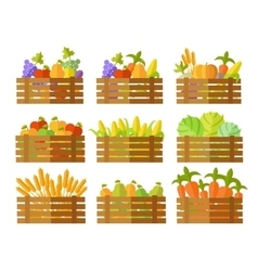 Set of boxes with fruits and vegetables in vector