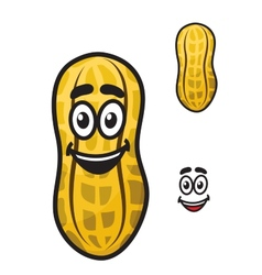 Happy little cartoon peanut or ground nut vector