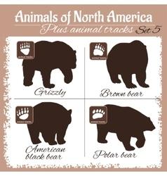North America animals and animal tracks vector image