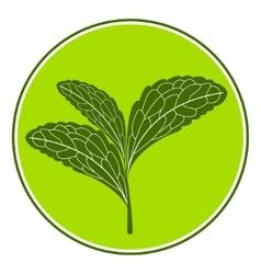 Stevia logo vector image