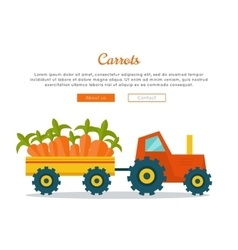 Carrot farm web banner in flat design vector