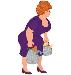 Cartoon fat woman in purple dress with groceries vector image