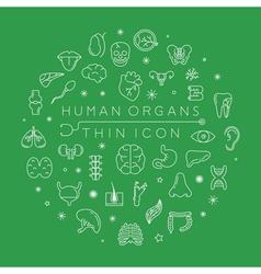 Human organs thin icons  eps10 format vector