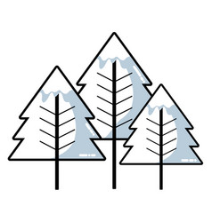 line beauty natural pine tree design vector image