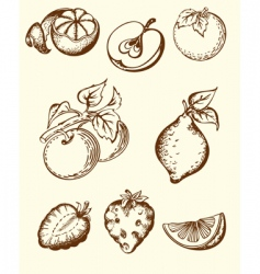 vintage fruit icons vector image