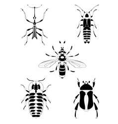 Art insect set vector