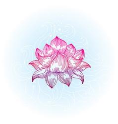 Lotus in hand-drawn style - vector