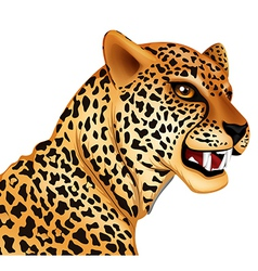 The cheetah vector