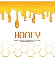Dripping honey seamless border vector