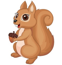 Cute cartoon squirrel holding a corn vector