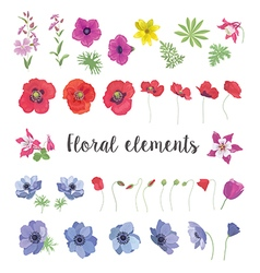 Set of floral elements for your design vector