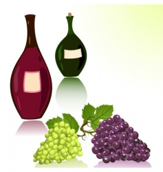 bottles of wine and grapes vector image vector image