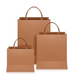 Brown Shopping Bags vector image vector image