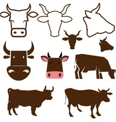 Cow labels vector