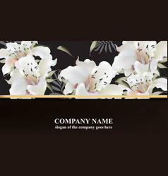 luxury brand card with white lily flowers elegant vector image