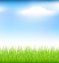 Grass and blue sky vector