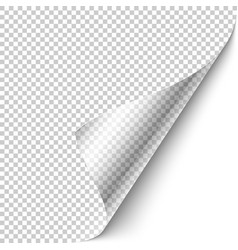 Curled corner with shadow vector