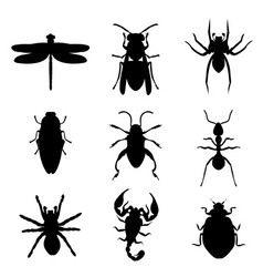 Insect bug animal silhouette icon black vector