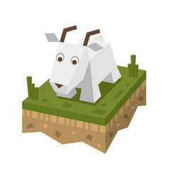 isometric flat white goat on the tile of ground vector image vector image