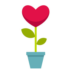Pink heart flower in a pot icon isolated vector