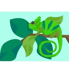 Chameleon masquerades as leaves animals and vector