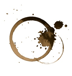 coffee stain vector image vector image