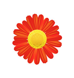Red flower icon colorful solid pattern on a white vector