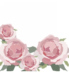 Watercolor pink rose isolated vector