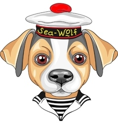 Cartoon dog jack russell terrier sailor vector