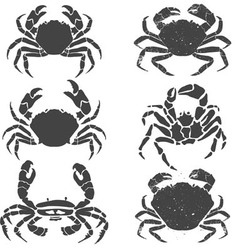 crabs set vector image