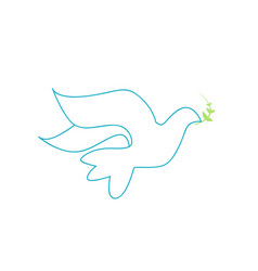 dove on white background vector image vector image