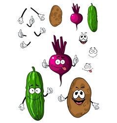 Cucumber potato and beet vegetables vector